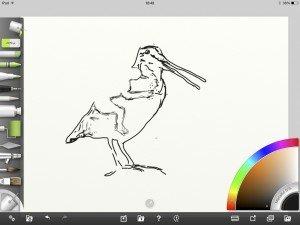 Lust voor het oog, rechter paneel, 2. iPad tekening vogel